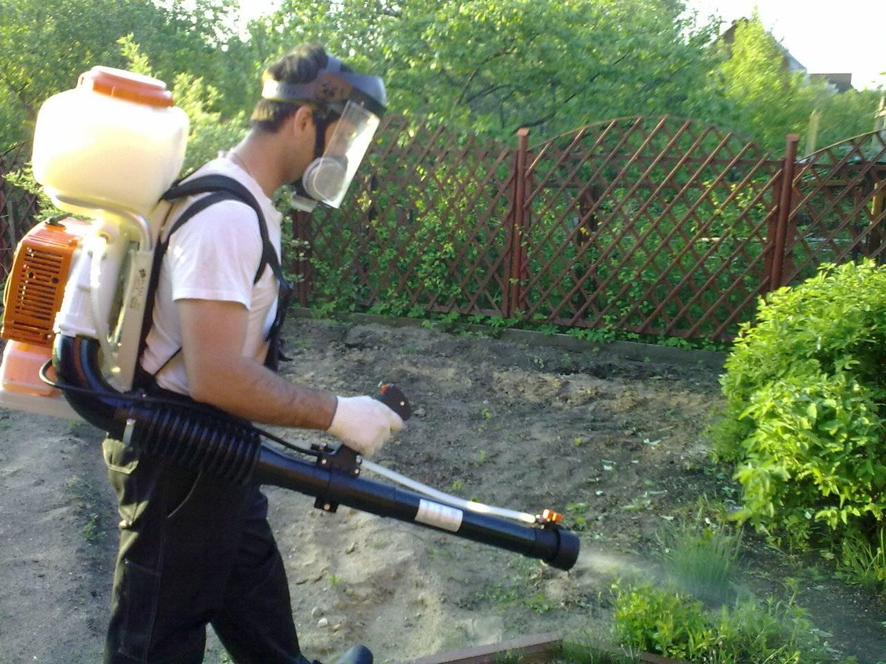 Уничтожение кустарников и деревьев гербицидами, арборицидами и другой химией