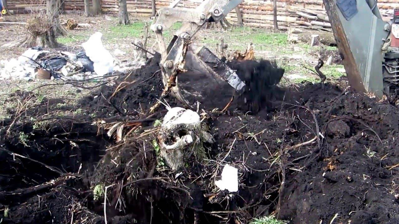 Как можно выкорчевать деревья на дачном участке?