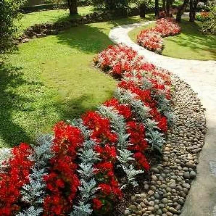 Цветущие кустарники для сада, многолетние и неприхотливые