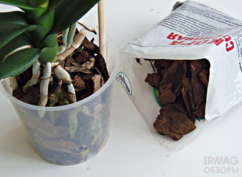 Кора для орхидей: примеры подготовки и варианты использования