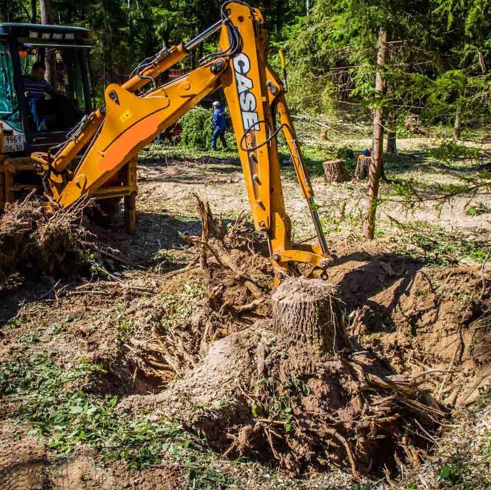 Выкорчевывание деревьев — как избавиться от корней деревьев